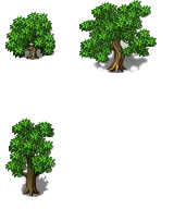Trees_and_plants_02.png